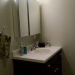 Bathroom vanity and mirror medicine cabinet